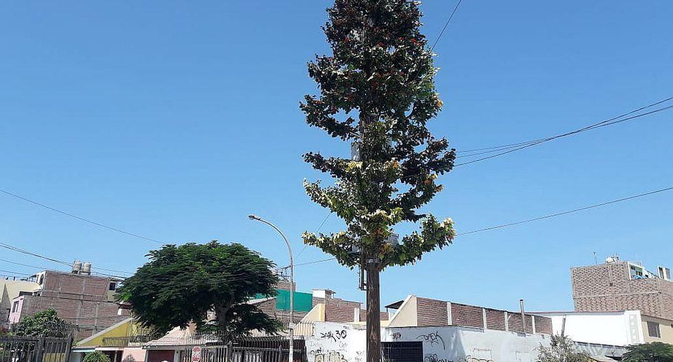 Escasez de antenas retrasaría llegada de tecnología 5G al Perú, advierten